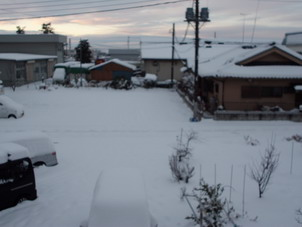 Dokayuki1